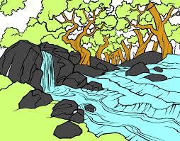 bosque inundado